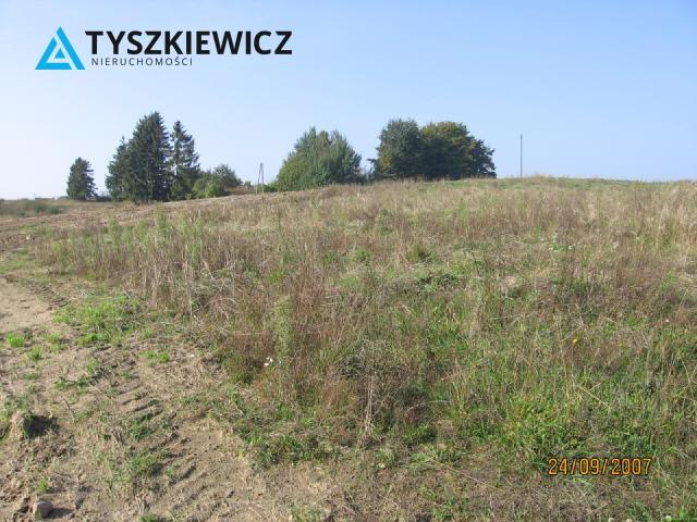 Zdjęcie 4 oferty TY063519 Dobrzewino, 9 Działek