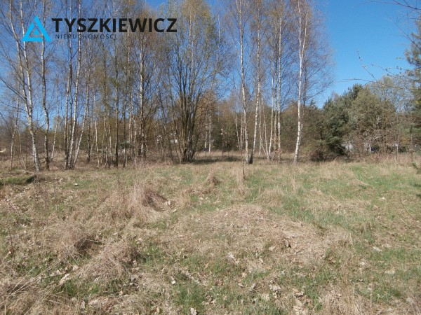 Zdjęcie 4 oferty TY394873 Chwaszczyno, ul. Katarzyny