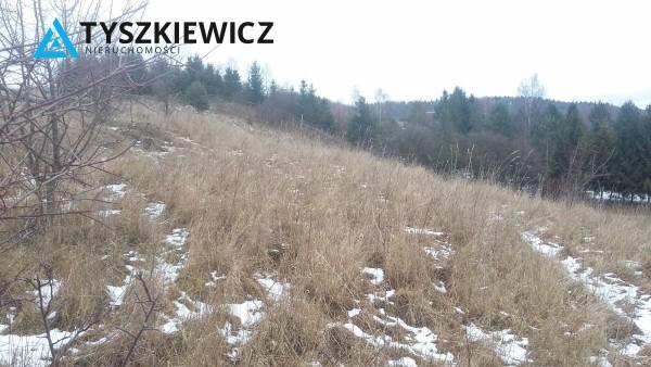 Zdjęcie 4 oferty TY603849 Pierszczewo,