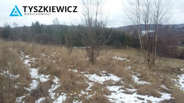 Zdjęcie 5 oferty TY603849 Pierszczewo,