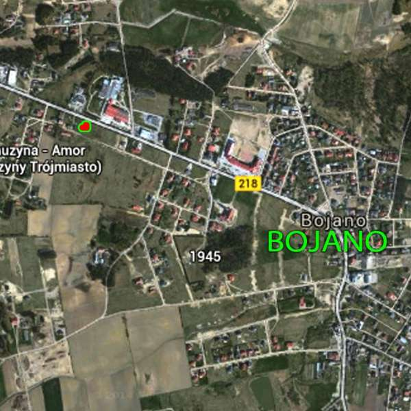 Zdjęcie 2 oferty TY946118 Bojano, ul. Józefa Wybickiego