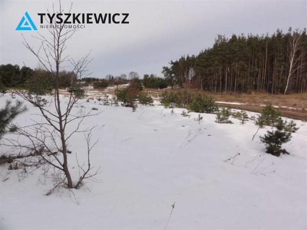 Zdjęcie 8 oferty TY063730 Bojano, ul. Zachodnia