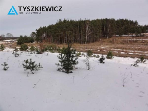 Zdjęcie 7 oferty TY063732 Bojano, ul. Zachodnia