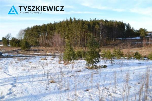 Zdjęcie 9 oferty TY063733 Bojano, ul. Zachodnia