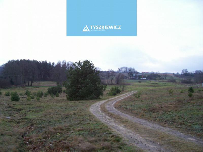 Zdjęcie 3 oferty TY063740 Koleczkowo, ul. Wrzosowa