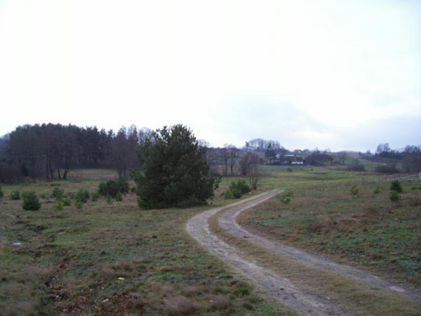 Zdjęcie 1 oferty TY063740 Koleczkowo, ul. Wrzosowa