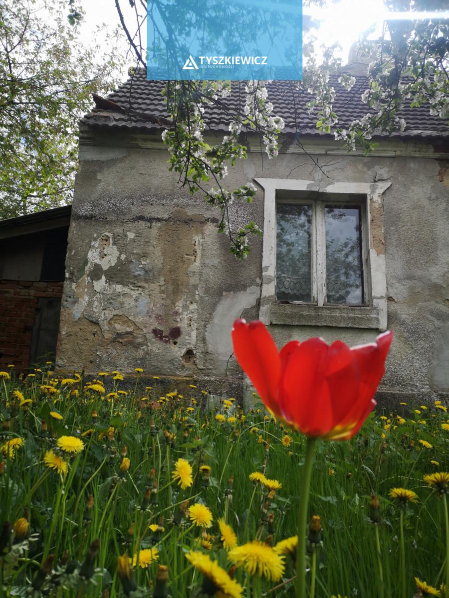 Zdjęcie 7 oferty 18027 Chojnice,
