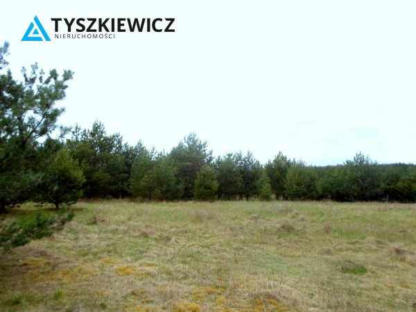 Zdjęcie 5 oferty TY574195 Bożepole Królewskie,