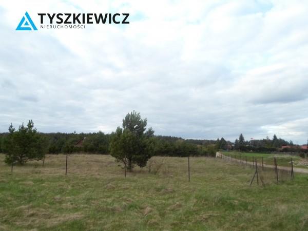 Zdjęcie 2 oferty TY131341 Bożepole Królewskie,