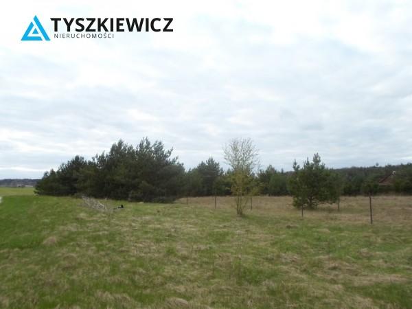 Zdjęcie 8 oferty TY131341 Bożepole Królewskie,