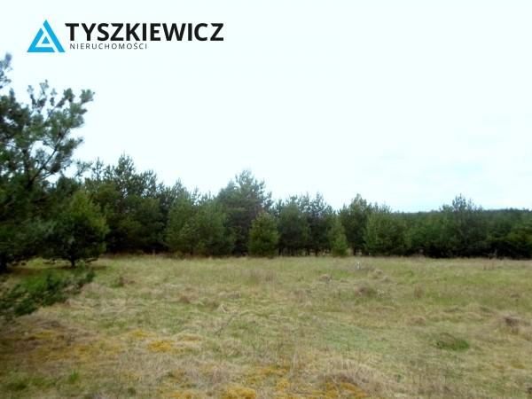 Zdjęcie 9 oferty TY131341 Bożepole Królewskie,