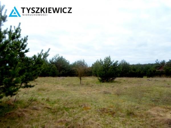 Zdjęcie 1 oferty TY131341 Bożepole Królewskie,