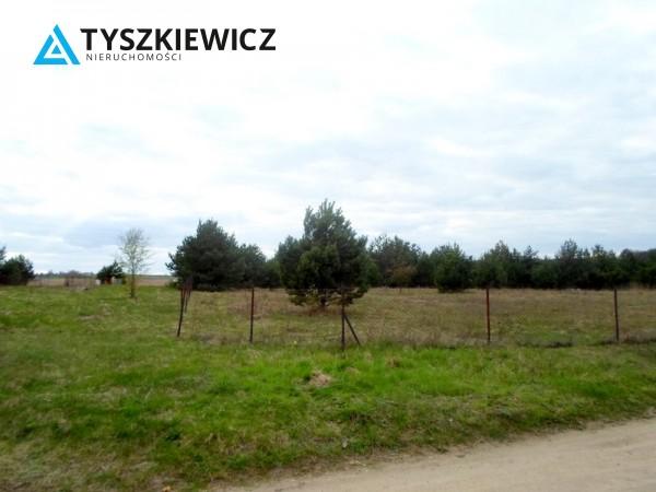 Zdjęcie 7 oferty TY131341 Bożepole Królewskie,
