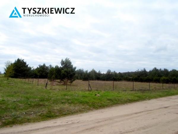 Zdjęcie 3 oferty TY131341 Bożepole Królewskie,