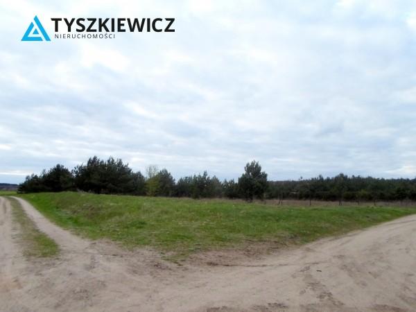 Zdjęcie 5 oferty TY131341 Bożepole Królewskie,
