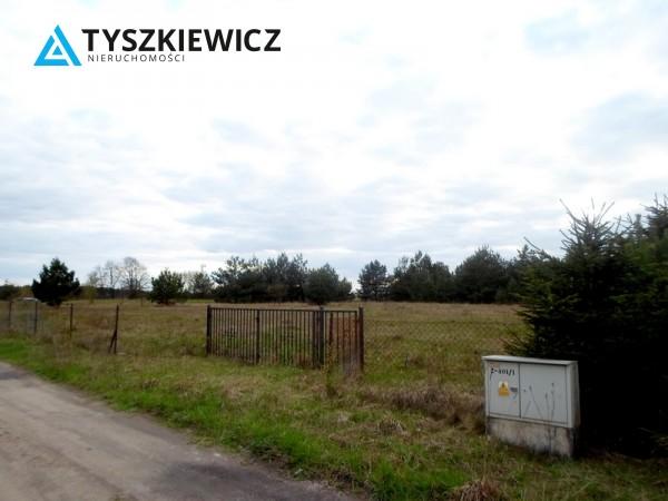 Zdjęcie 11 oferty TY131341 Bożepole Królewskie,