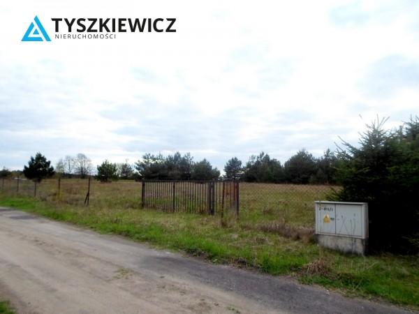 Zdjęcie 4 oferty TY131341 Bożepole Królewskie,