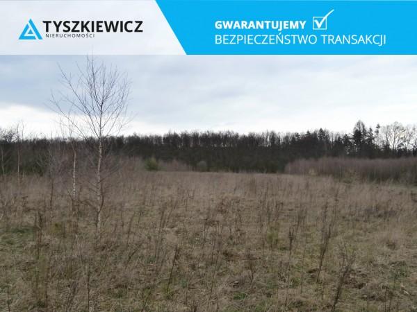 Zdjęcie 4 oferty TY193046 Trąbki Wielkie, ul. Gdańska