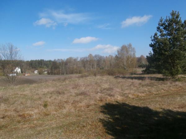 Zdjęcie 3 oferty TY265558 Łubiana,