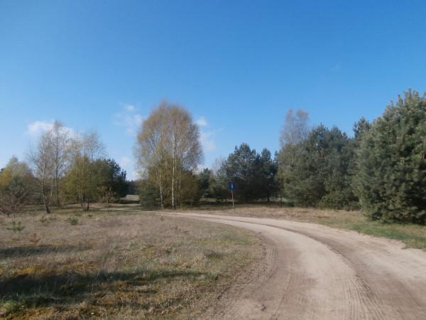 Zdjęcie 4 oferty TY265558 Łubiana,