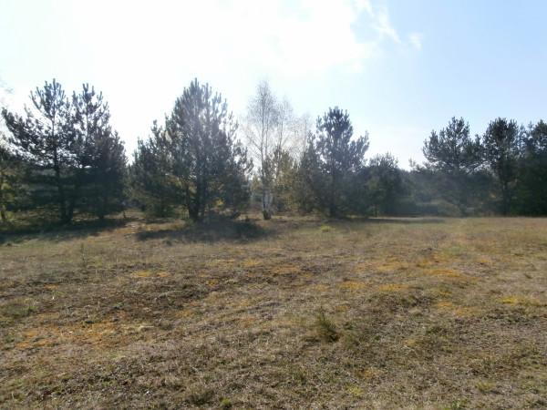 Zdjęcie 5 oferty TY265558 Łubiana,