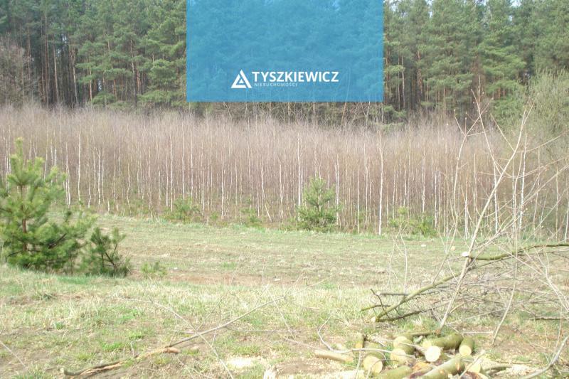 Zdjęcie 2 oferty TY036218 Gdynia Dąbrowa, ul. Łanowa