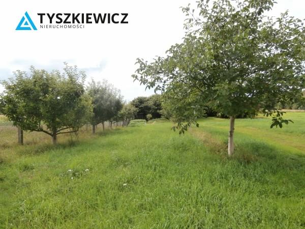 Zdjęcie 6 oferty TY064485 Bytów, Udorpie