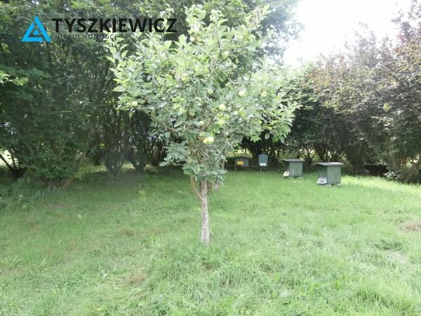 Zdjęcie 13 oferty TY064485 Bytów, Udorpie