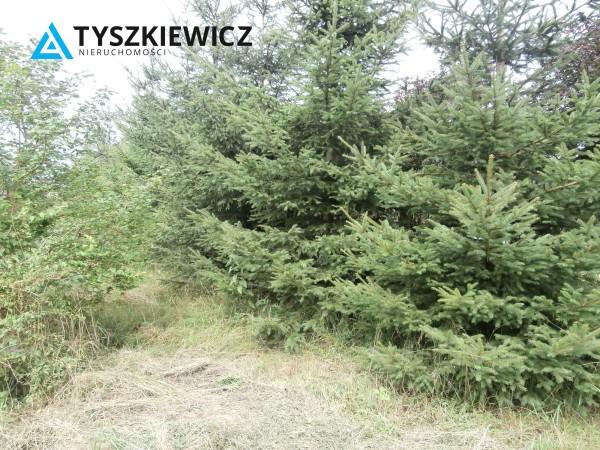 Zdjęcie 27 oferty TY064485 Bytów, Udorpie