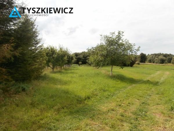 Zdjęcie 29 oferty TY064485 Bytów, Udorpie