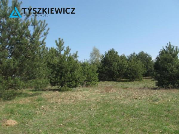 Zdjęcie 3 oferty TY064489 Sulęczyno