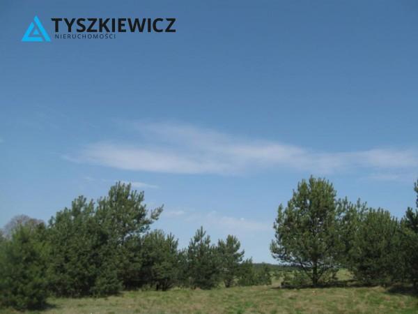 Zdjęcie 2 oferty TY064489 Sulęczyno