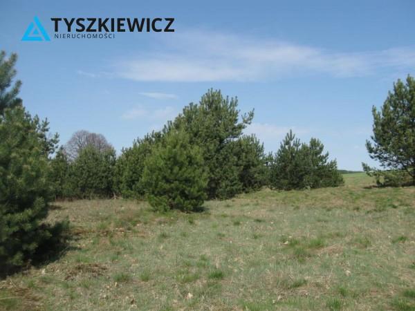 Zdjęcie 5 oferty TY064489 Sulęczyno