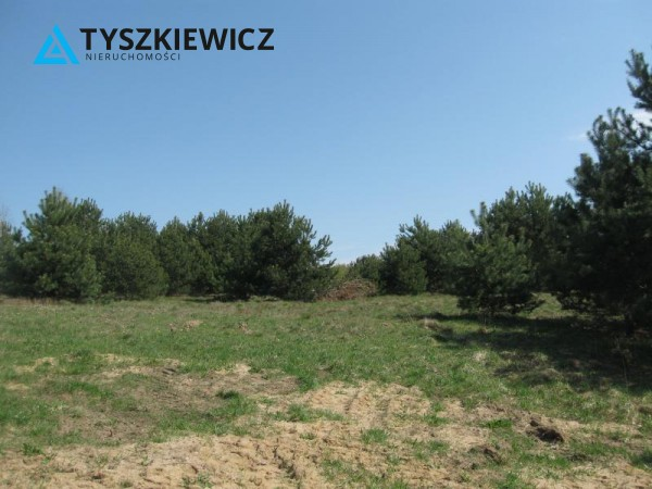 Zdjęcie 7 oferty TY064489 Sulęczyno