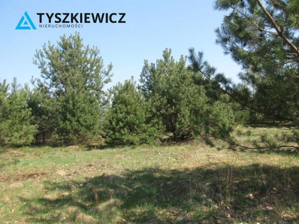 Zdjęcie 8 oferty TY064489 Sulęczyno