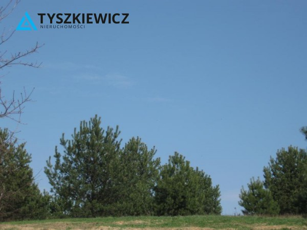 Zdjęcie 9 oferty TY064489 Sulęczyno