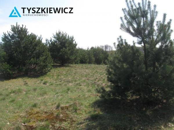 Zdjęcie 11 oferty TY064489 Sulęczyno