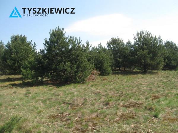 Zdjęcie 12 oferty TY064489 Sulęczyno