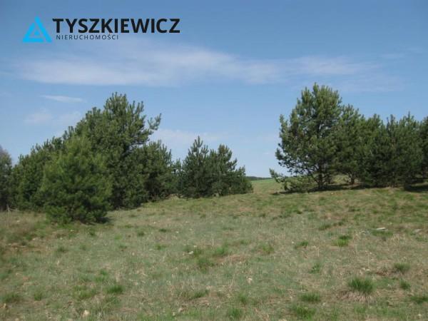Zdjęcie 13 oferty TY064489 Sulęczyno