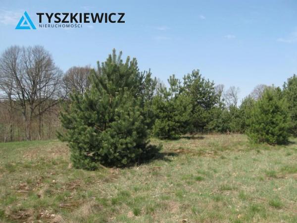 Zdjęcie 15 oferty TY064489 Sulęczyno