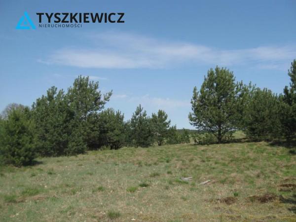 Zdjęcie 16 oferty TY064489 Sulęczyno