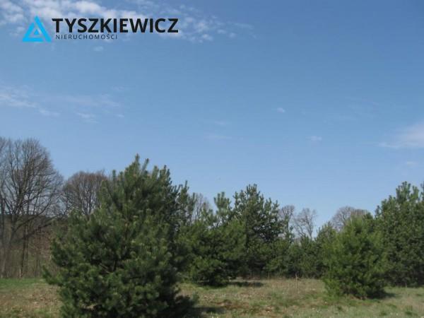 Zdjęcie 17 oferty TY064489 Sulęczyno