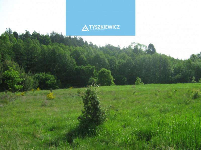 Zdjęcie 2 oferty TY064723 Jutrzenka,