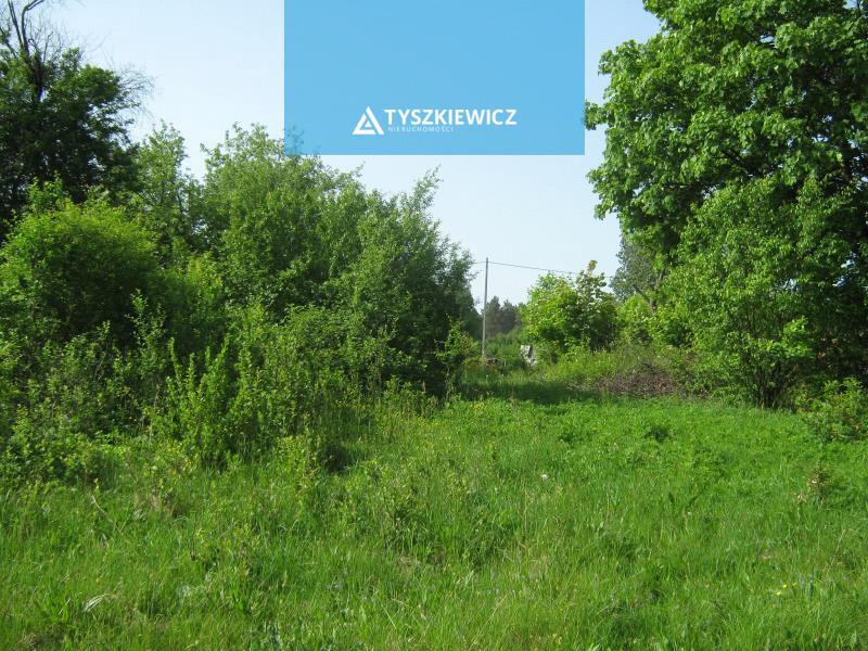 Zdjęcie 4 oferty TY064723 Jutrzenka,