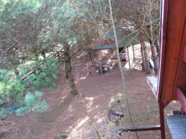 Zdjęcie 18 oferty TY064932 Bożepole Królewskie, Leśna