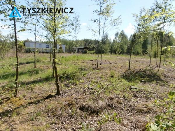 Zdjęcie 4 oferty TY280332 Liniewo,