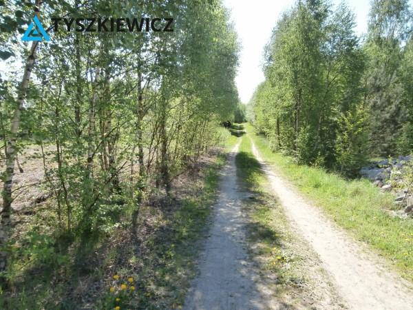 Zdjęcie 8 oferty TY280332 Liniewo,