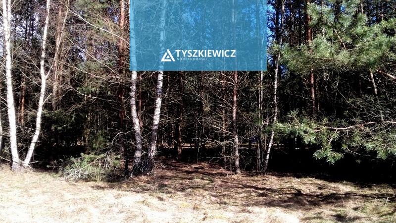 Zdjęcie 2 oferty TY220501 Ocypel,