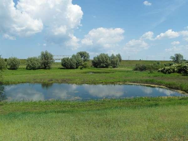 Zdjęcie 6 oferty TY177777 Kolnik, ul. Stare Wierzby