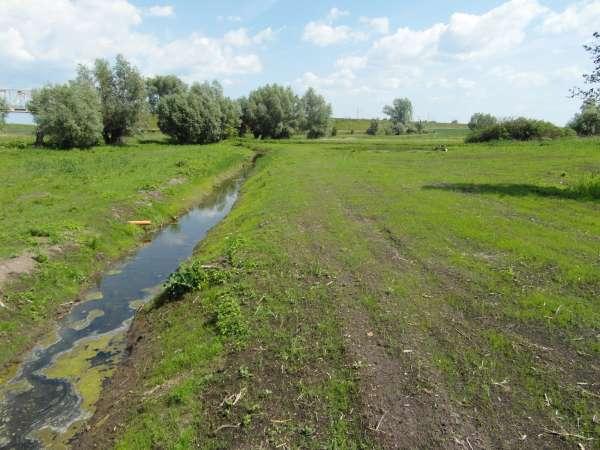 Zdjęcie 12 oferty TY177777 Kolnik, ul. Stare Wierzby
